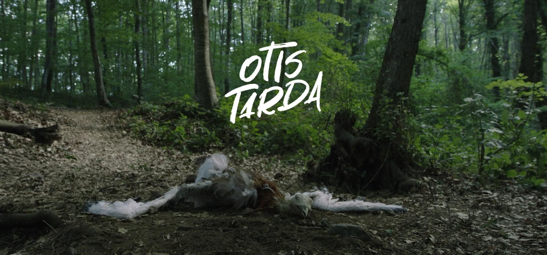 """Emre Öksüz'ün Son Kısa Filmi """"Otis Tarda""""nın Çekimleri Tamamlandı"""