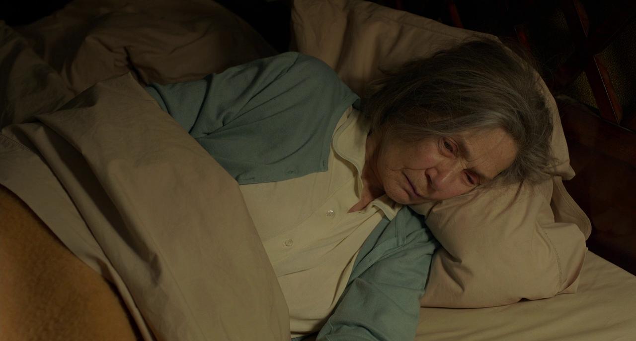 Evde Kalan Burjuva: Amour (2012)